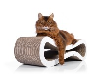 Preview: Cat Racer cat scratcher