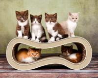 Preview: cat-on Singha M - design cat tree Made in Germany