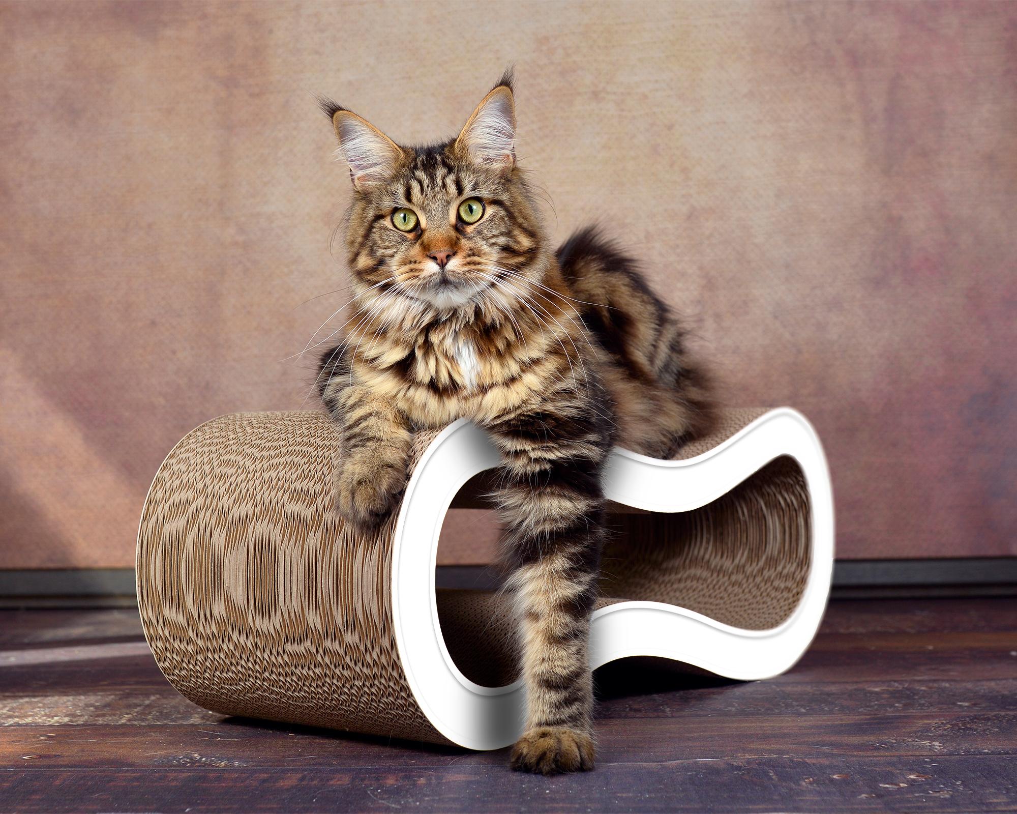 Design cardboard cat scratcher Singha M in white