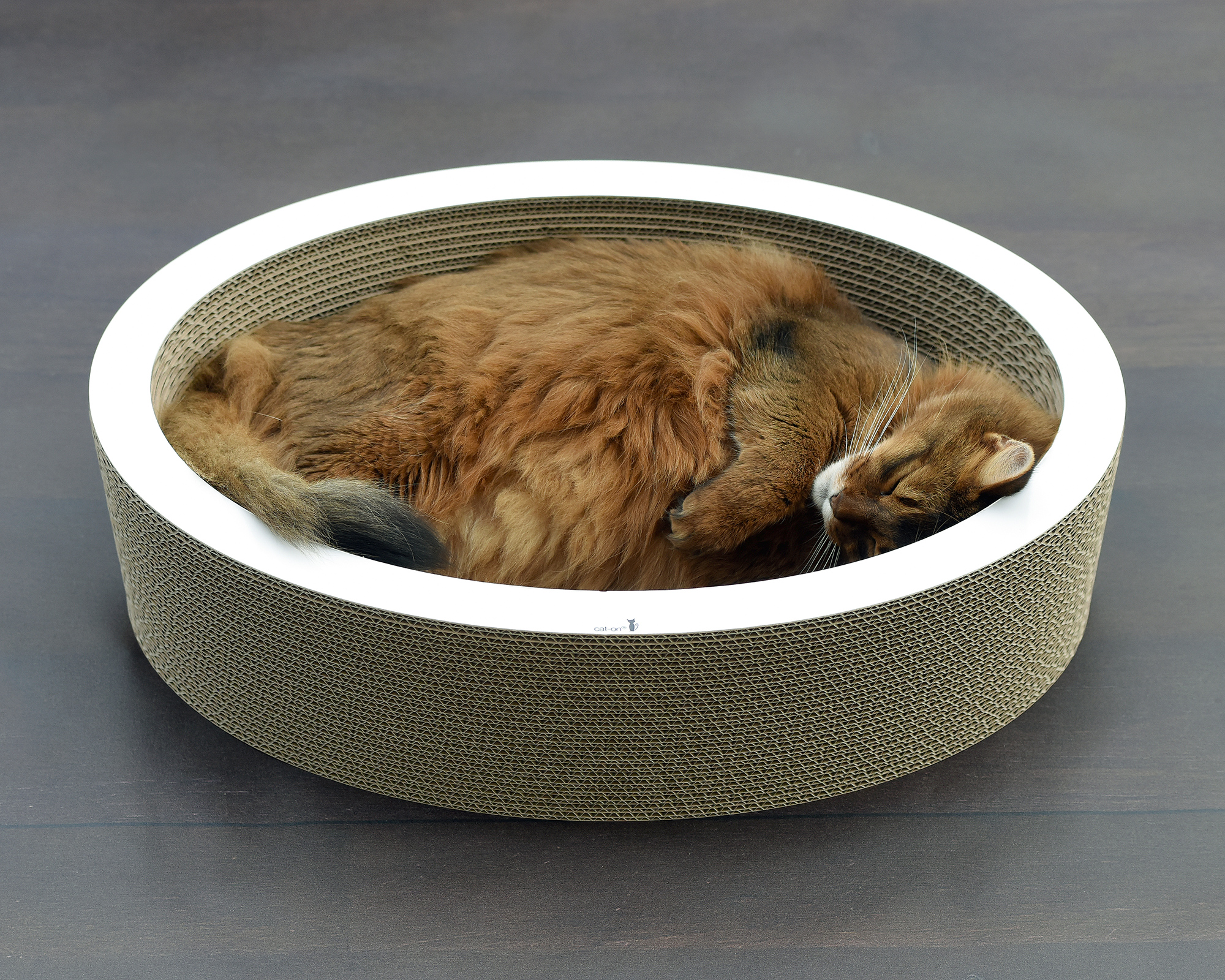 Lovale - cardboard cat bed