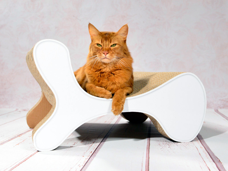 cat-on Molecular Fauteuil - a cat tree goes design