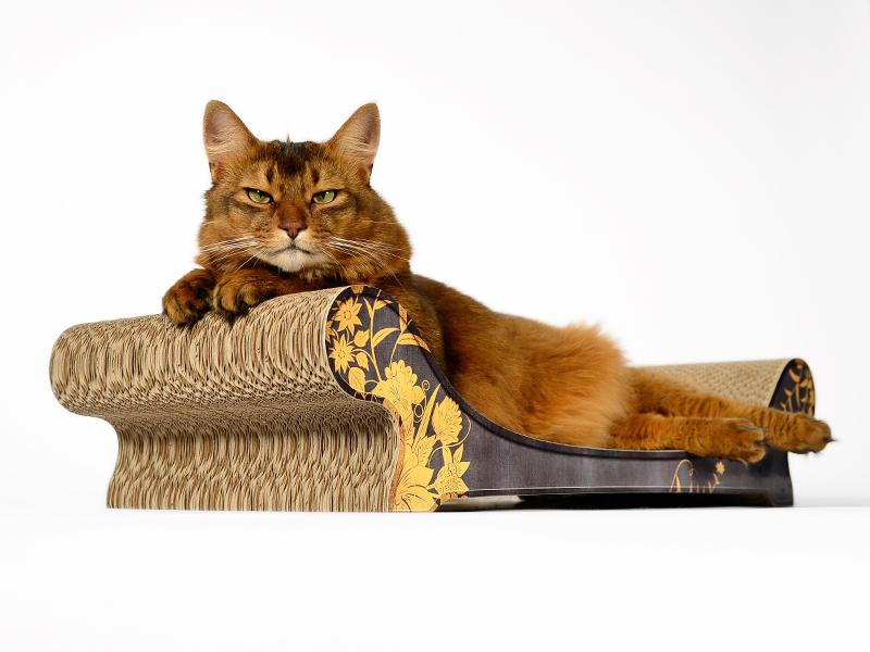 cat sofa Le Canapé |cardboard scratchboard