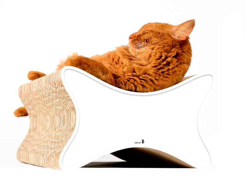 cardboard cat scratching furniture Le Papillon