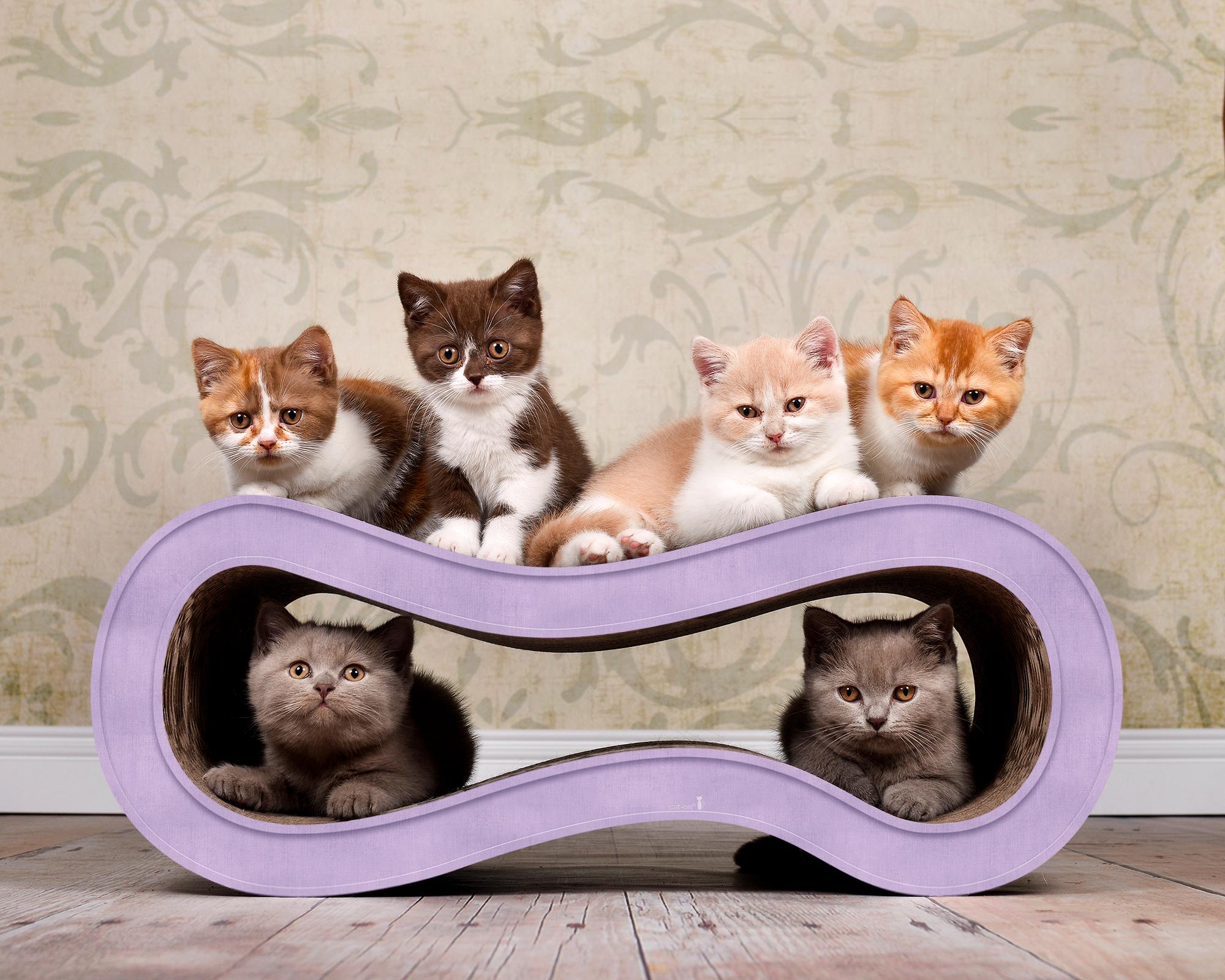 Design cat furniture Singha M in lilac