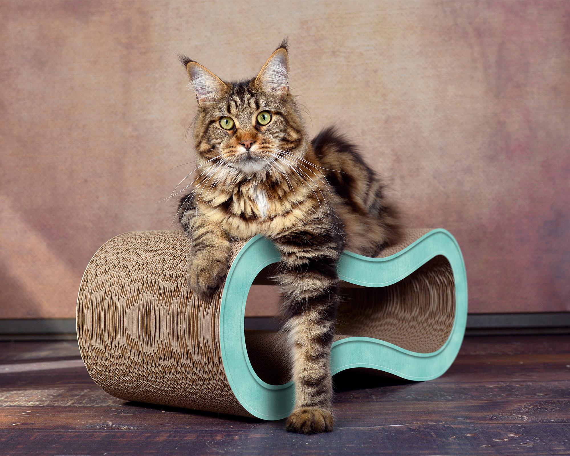 Kratzbrett für Katzen Kratzmöbel Singha M Farbe türkis 006c