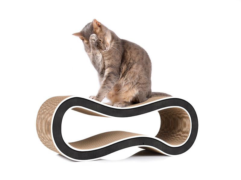 the elegant cat tree alternative: cardboard cat scratcher Singha M