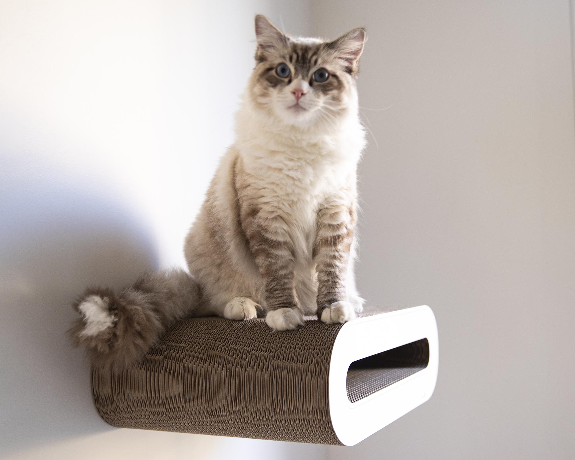 Le Rouleau wall cat scratcher