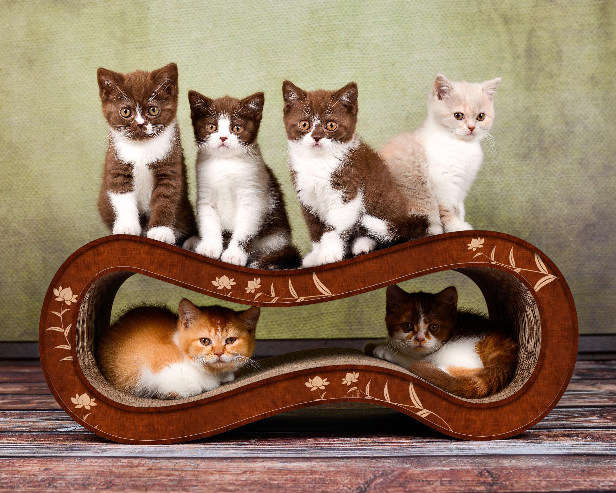 De Luxe cat bedding Singha M in brown