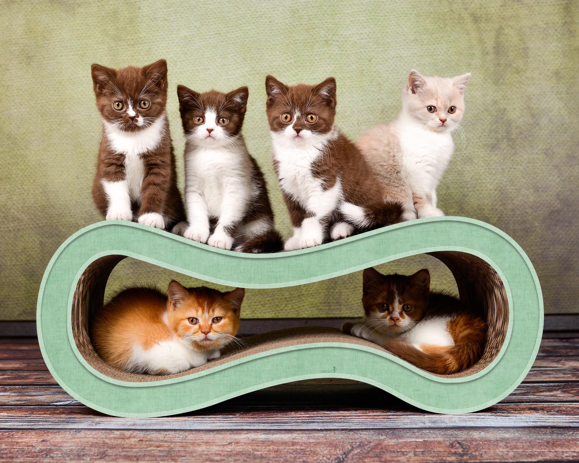 De luxe cat scratcher Singha M colored in light green
