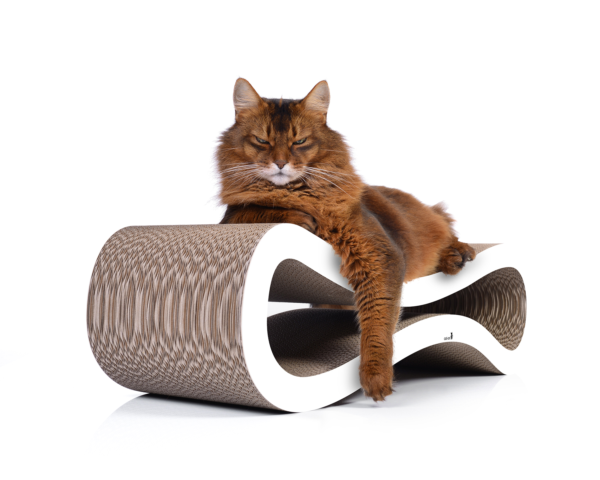 cat tree Cat Racer