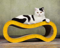 Preview: dark yellow colored cat scratcher Singha M
