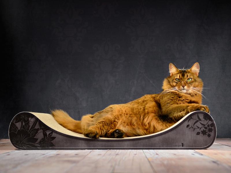 cat-on Le Divan - cardboard cat lounger - color: 013b