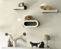 Le Plateau L cat shelve