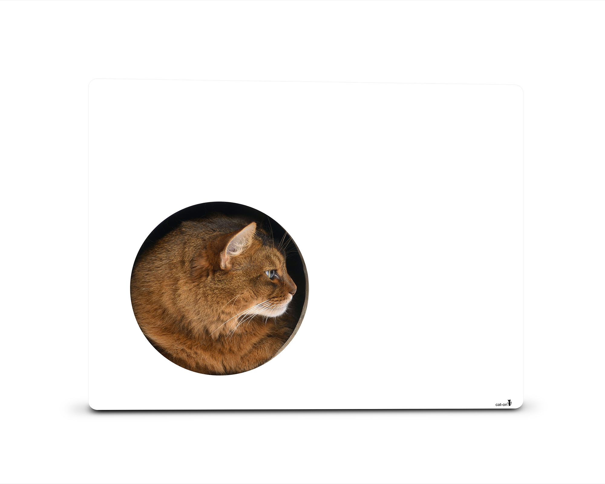 Phredia Eckhaus design cat scratcher