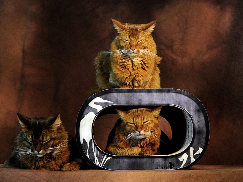 Le Tronc - cat scratching furniture - scrapers