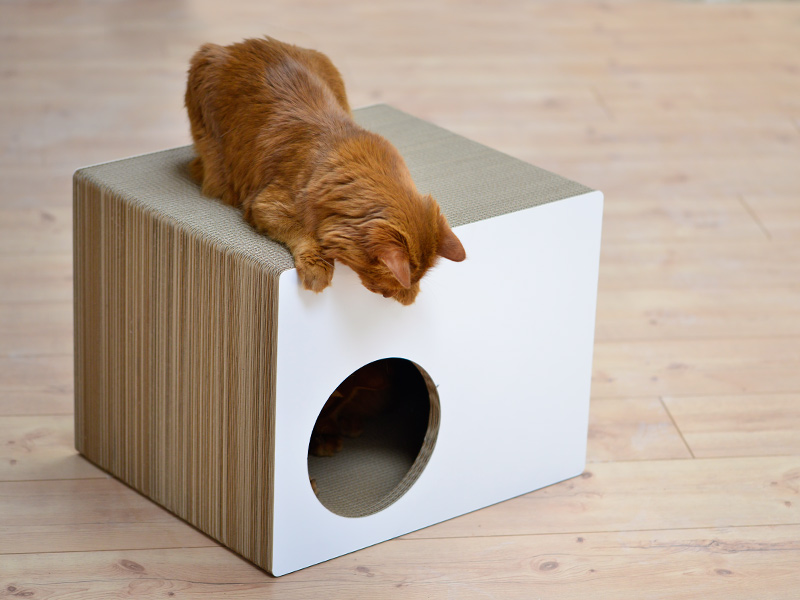 Ultra resistent cardboard cat house | deisgn cat furniture Made in Germany