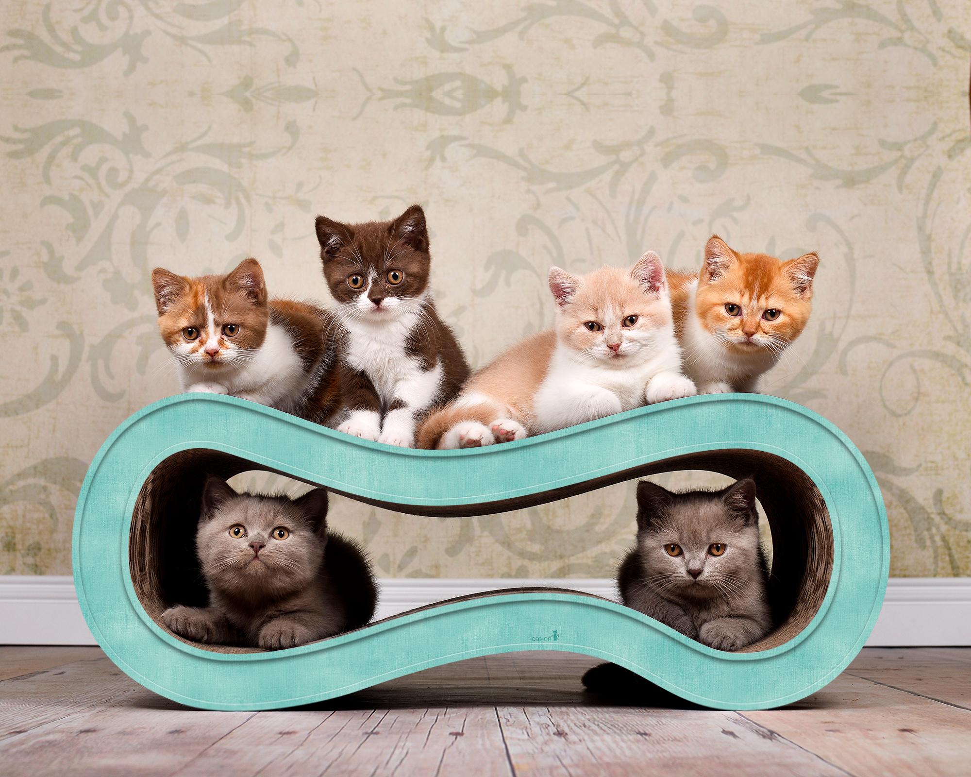 Katzen Kratzwelle aus umweltfreundlicher Wellpappe Singha M Farbe türkis
