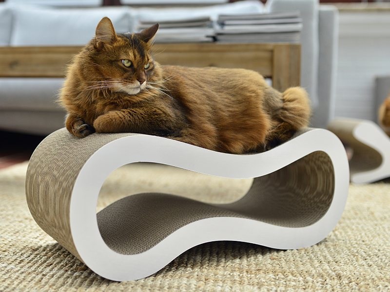 Elegant cat tree Singha M - cardboard cat scratch post