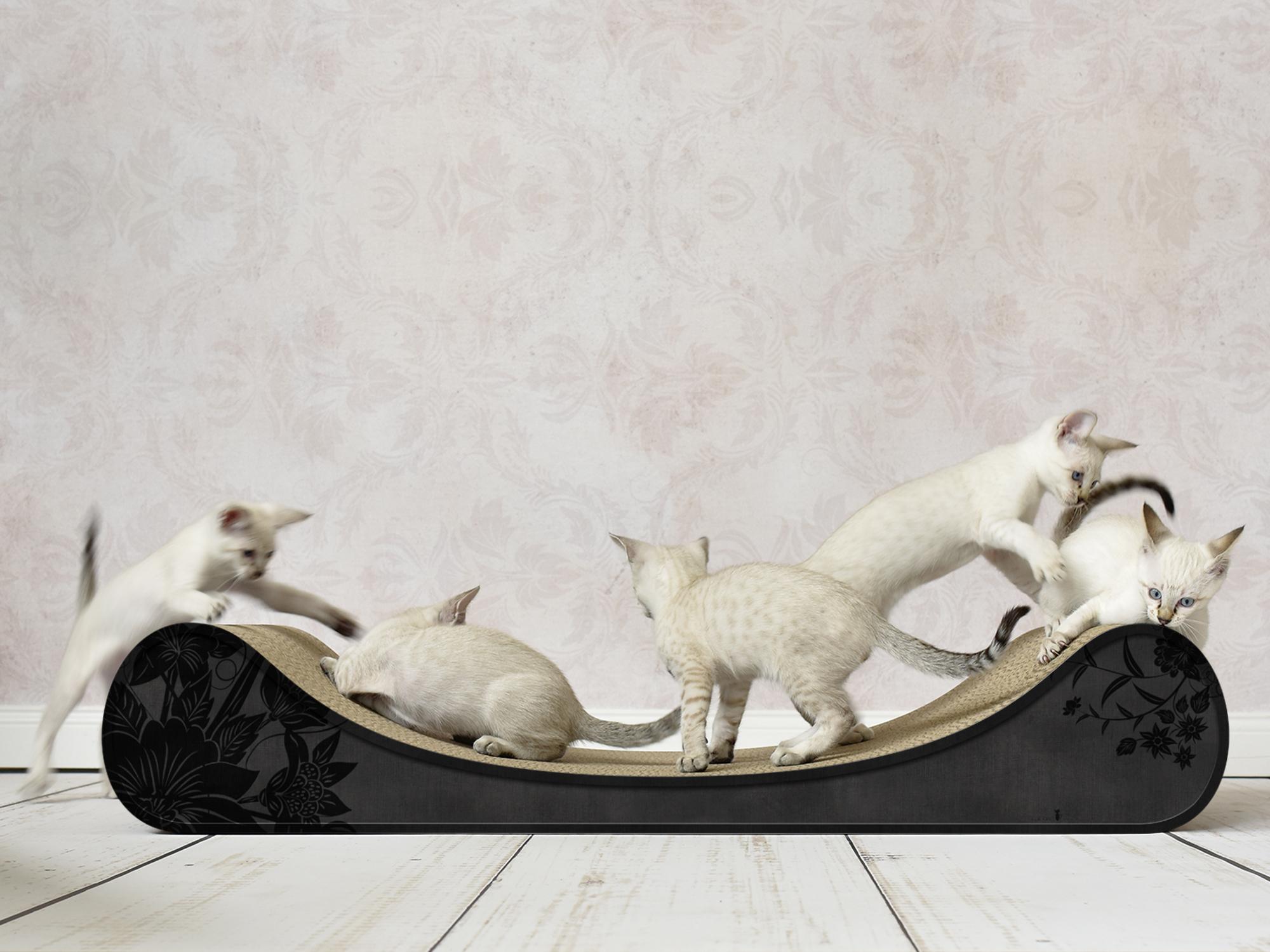 cardboard cat scratcher Le Divan, color: 013b