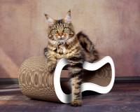 Preview: Design cardboard cat scratcher Singha M in white