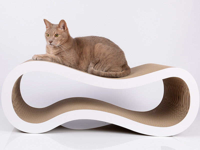 Design cat scratching furniture cat-on Singha L
