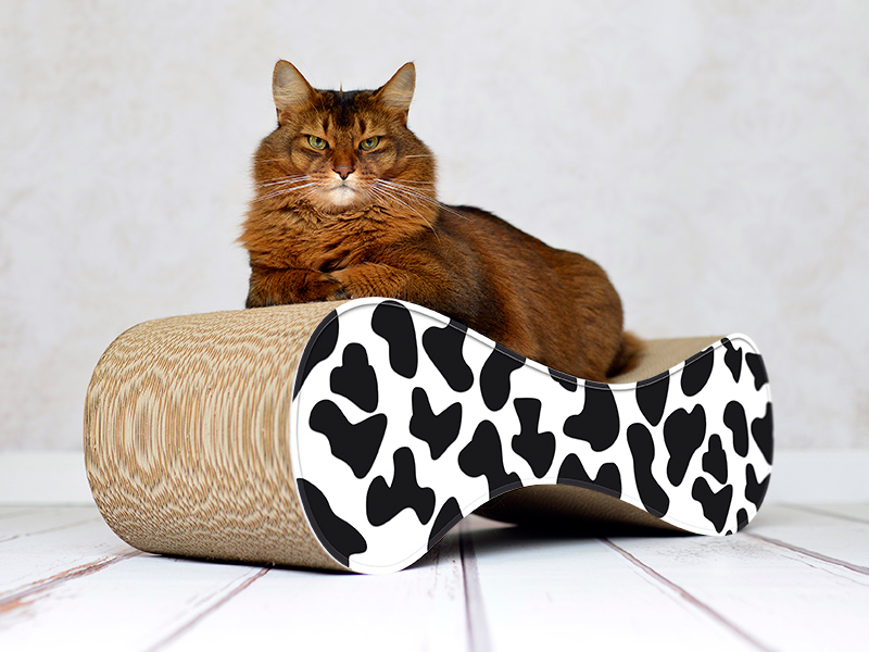 cat lounge Le Ver | cardboard cat furniture Made in Germany