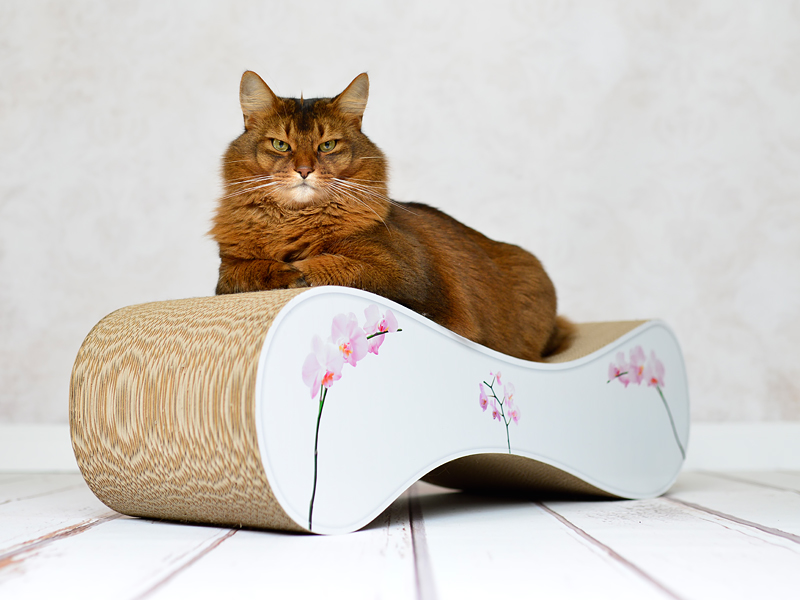cat scratcher Le Ver | cardboard scratch post