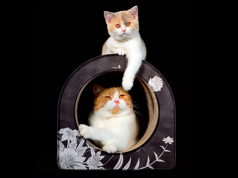 cardboard cat scratcher | scratch post for cats