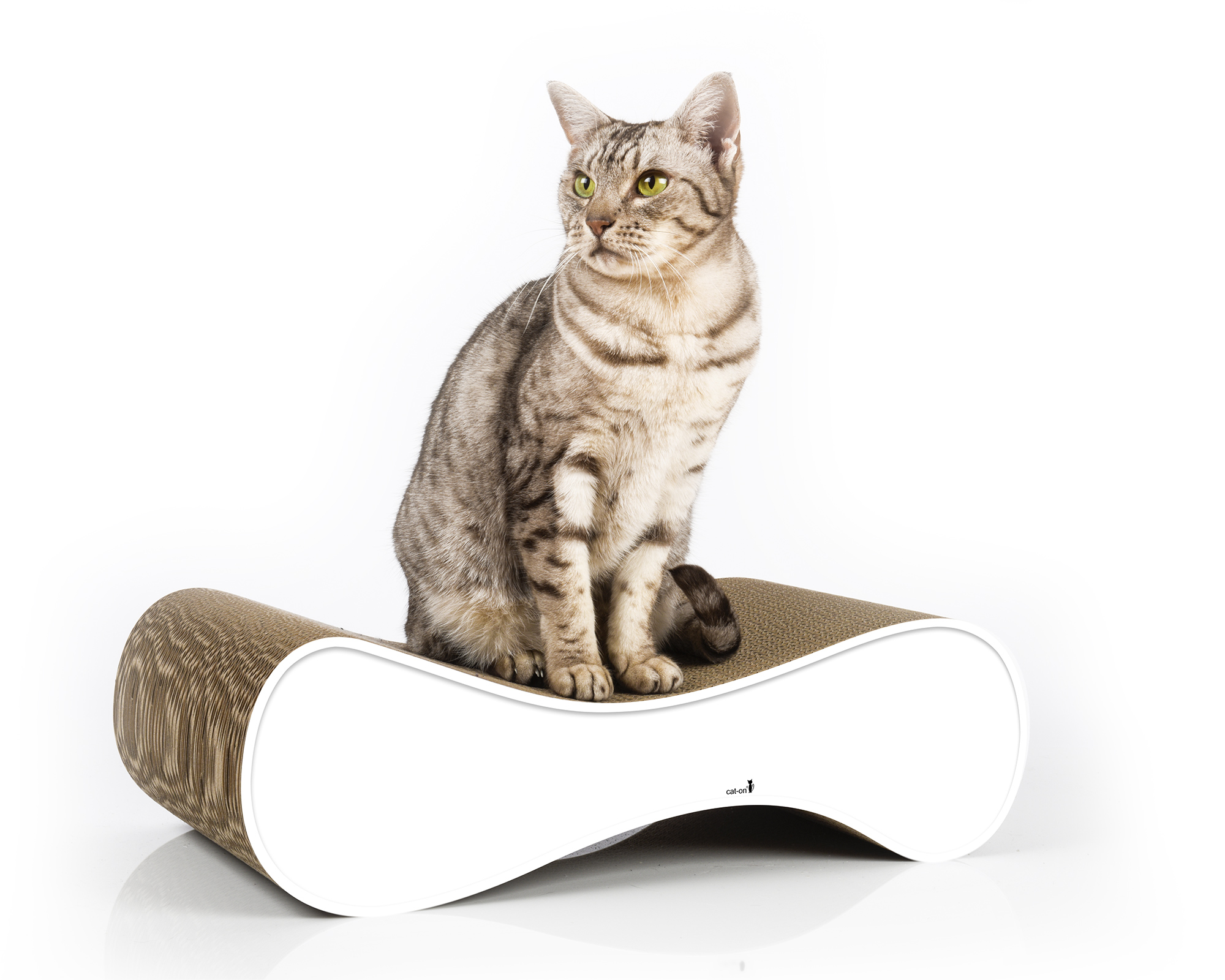 Le Ver S - design cat scratcher