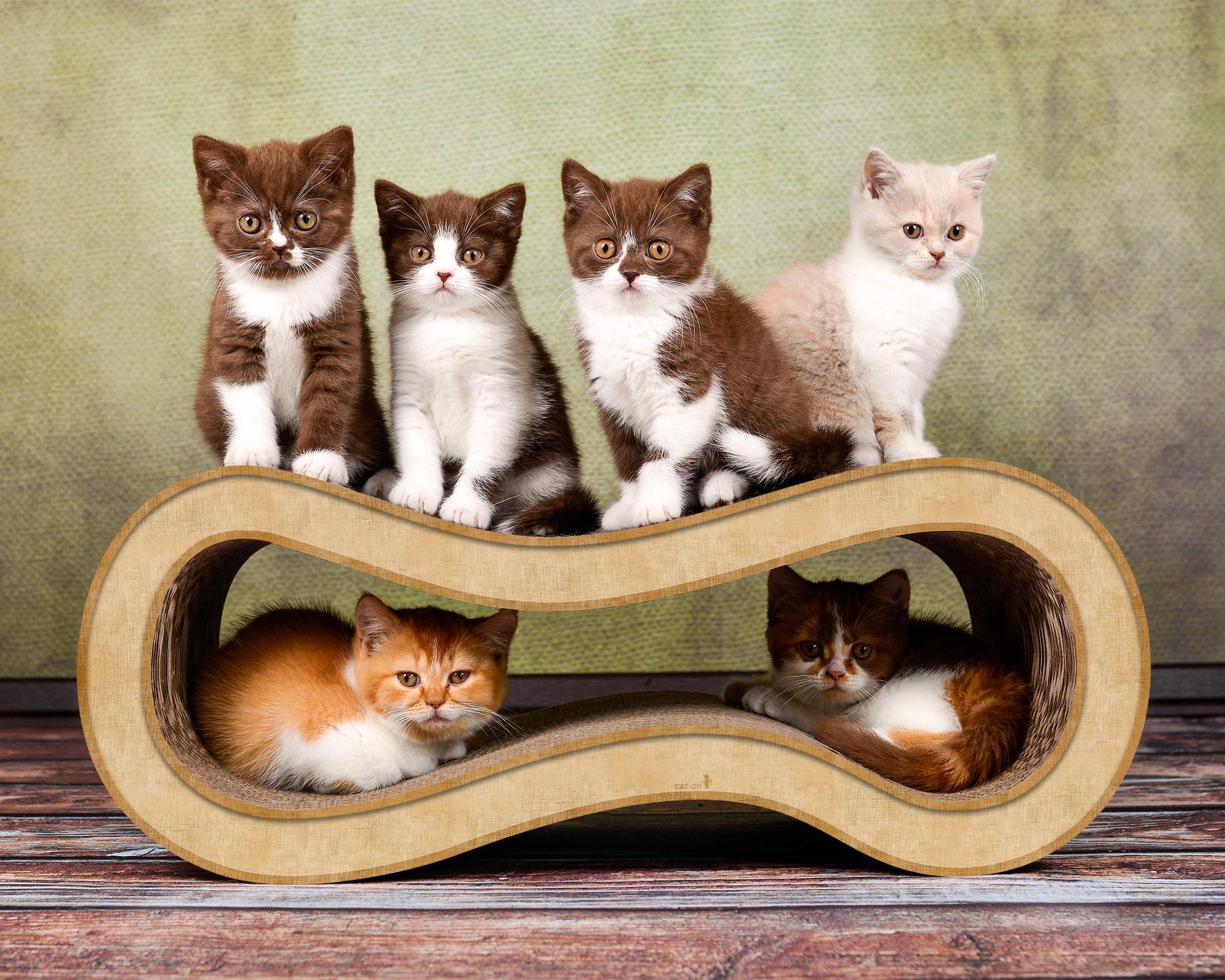 cat scratching post Singha M in beige color