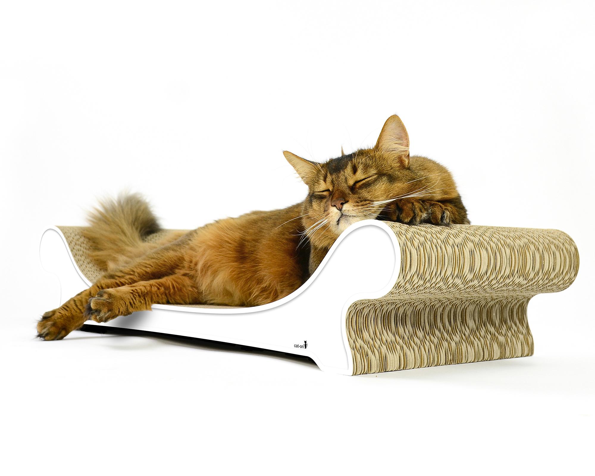 Le Canapé cat sofa