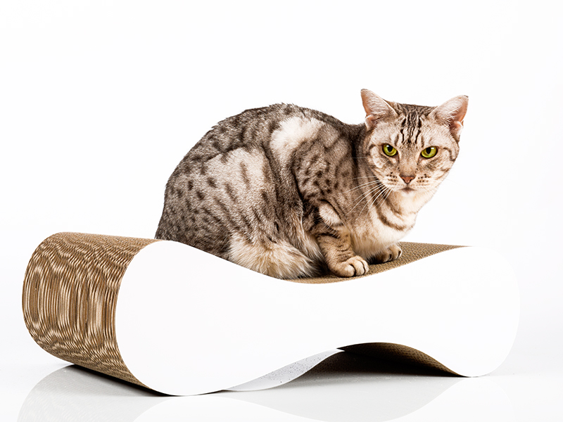 white cardboard cat scratcher Le Ver S