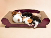 cat sofa Vertige | cardboard cat lounge - german quality