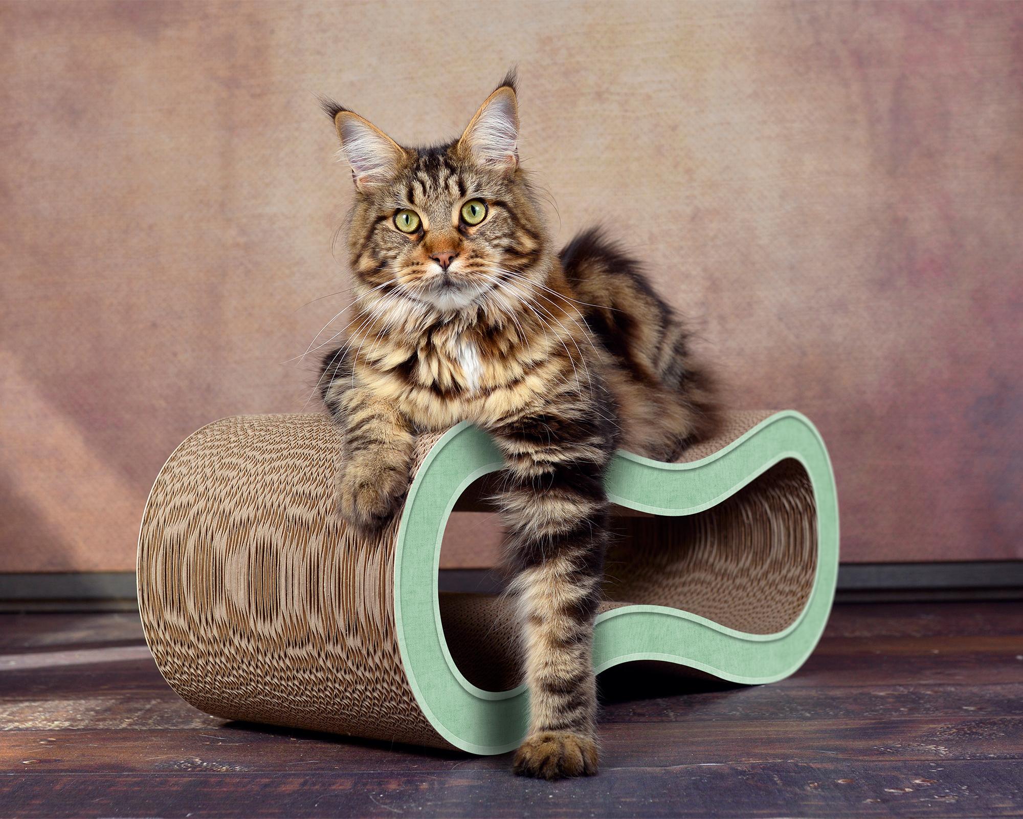 mint-green cat scratching post Singha M