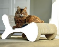 Preview: High quality papers for eco-friendly and sustainable cat scratchers