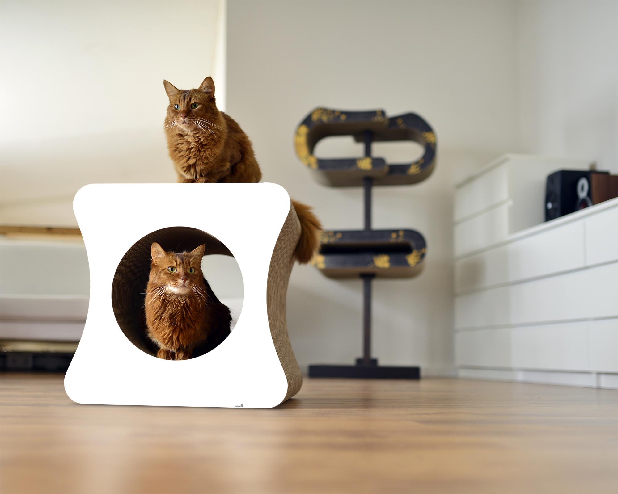Le cube design cat scratch post