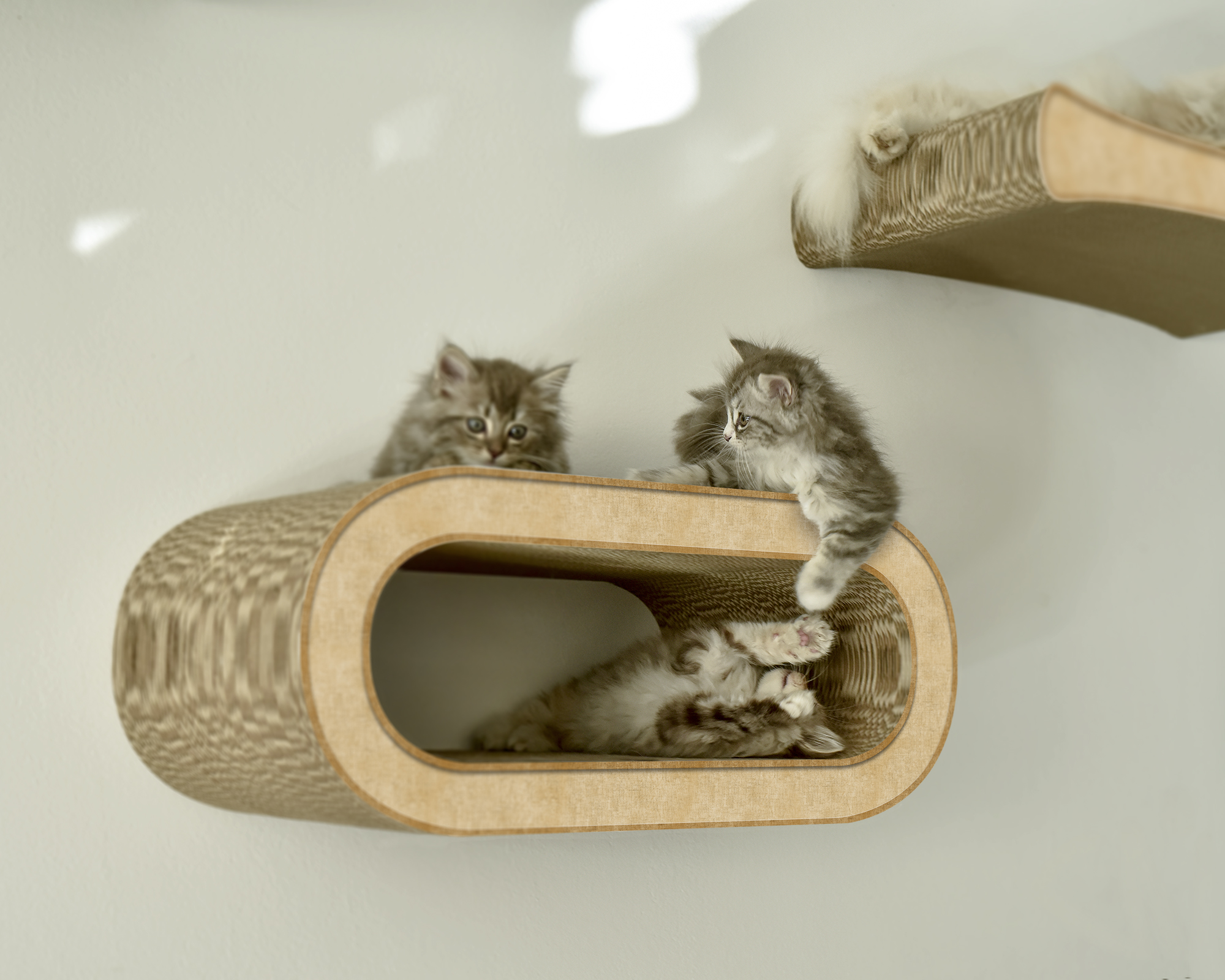 cardboard design wall scratcher for cats in beige color