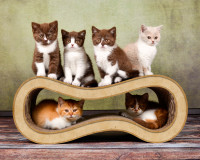 Preview: cat scratching post Singha M in beige color