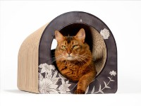 cat-on cat scratcher Le Tube L