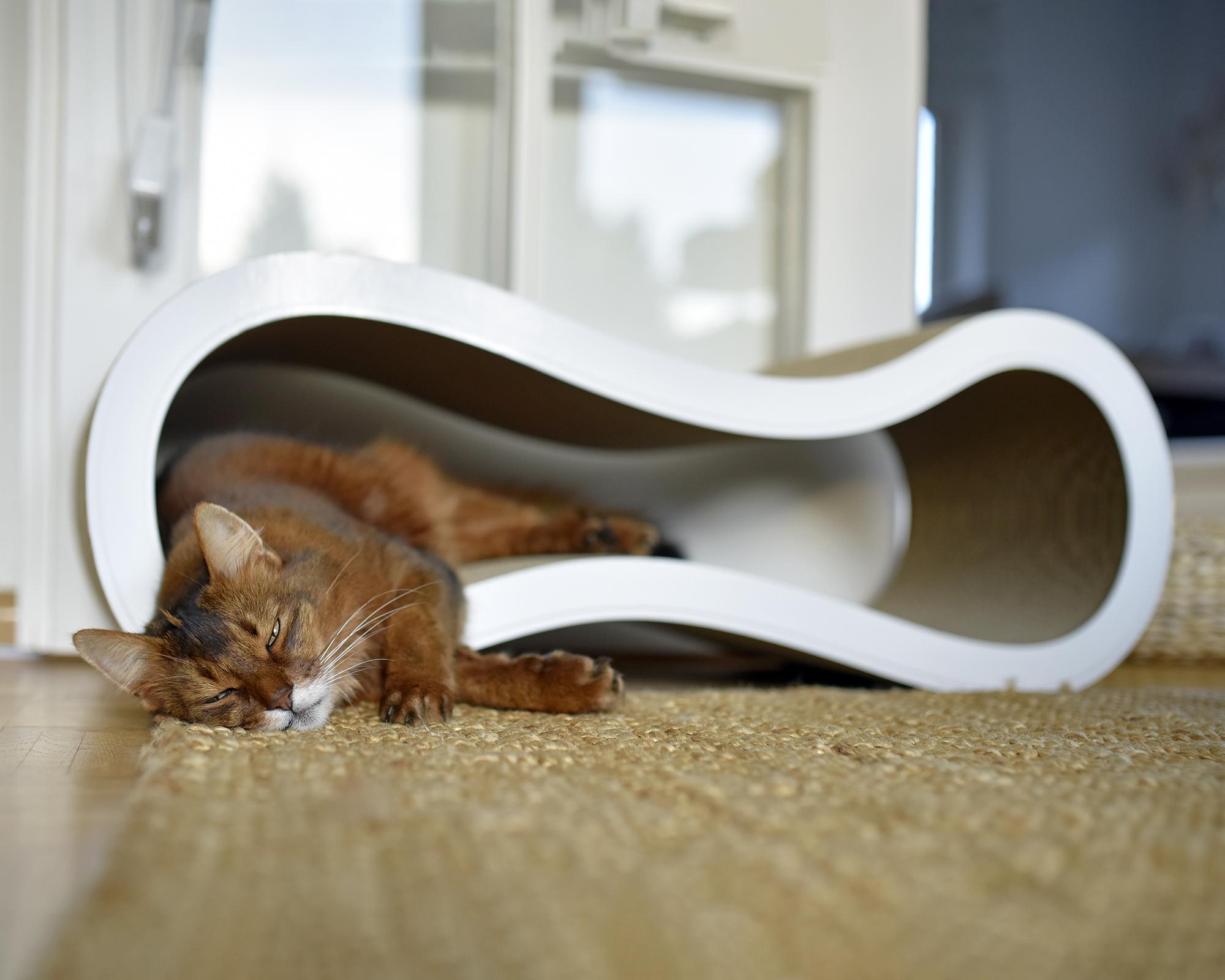 Multifunctional cardboard cat scratcher Singha Large