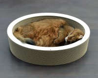 Lovale - cardboard cat bed