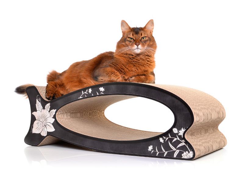 cat-on Le Fish |cardboard cat scratcher