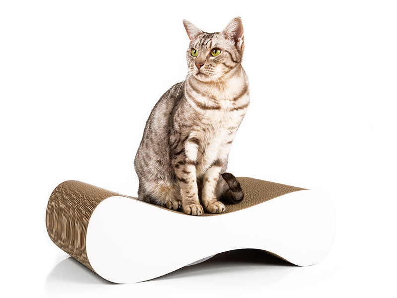 Design catscratcher cat-on Le Ver S in white